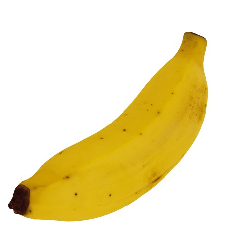 Banana Musaceae - RT Edition