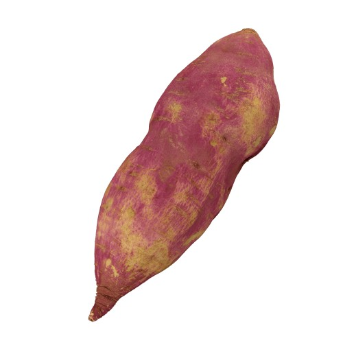 Purple Sweet Potato - ED Edition