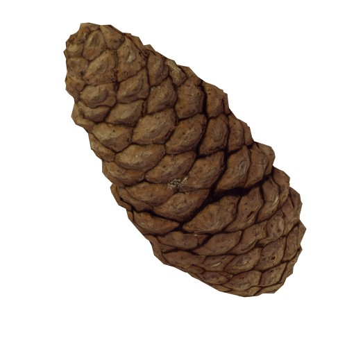 Pine Cone - RT Edition